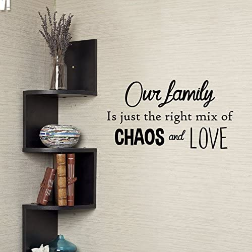 Family Just Right Chaos Love
