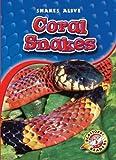 Coral Snakes (Paperback) (Blastoff! Readers: Snakes Alive)