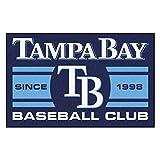 FANMATS 18485 Tampa Bay Devil Rays Baseball Club Starter Rug