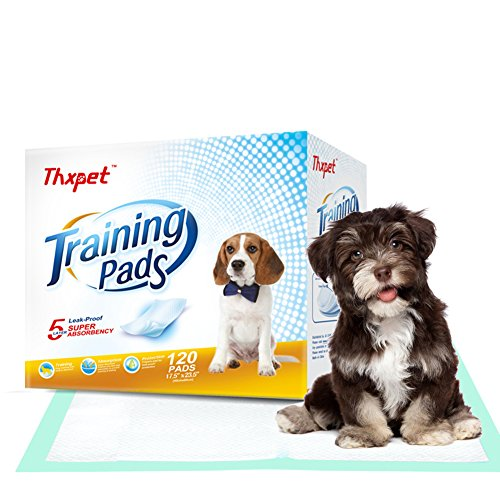 Thxpet Puppy Pads Super Absorbent Leak-Proof 120 Count Dog Pee Training Pads 17.5 x 23.5 inch