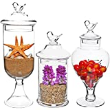 MyGift® Bird Top Handle Design Clear Glass Apothecary Jar Centerpieces / Wedding Candy Buffet Containers (Set of 3)