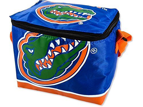 NCAA Florida Gators Lunch Bag Florida Gators Ncaa Bean Bag