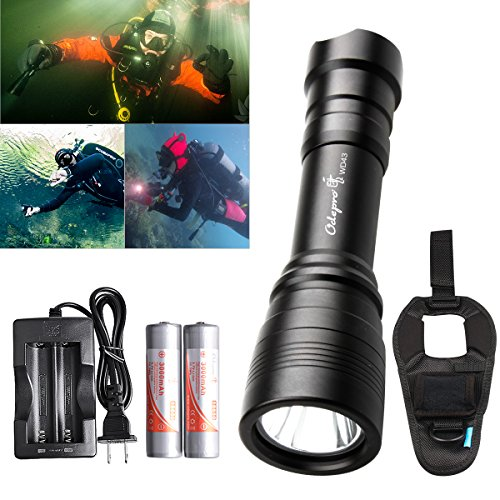 1000 Lumen Led Dive Light - 6