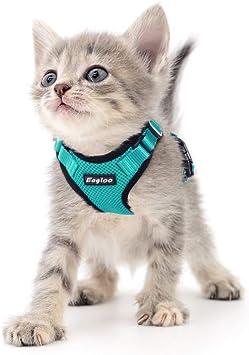 Eagloo Arnés para Gato Perrito Upgrade con Cuello Sin Tirón y ...