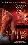 img - for Burning Up (Berkley Sensation) book / textbook / text book