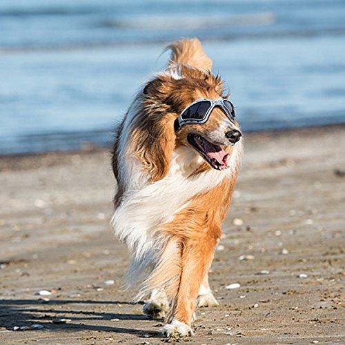 PETLESO Large Dog Goggles Sunglasses UV Goggles Goggles Golden Retriever Goggles -Gray