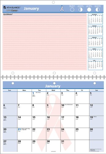 (AT-A-GLANCE PMPN5028 QuickNotes Special Edition Vertical Wall Calendar, 11 x 8, 2016 )