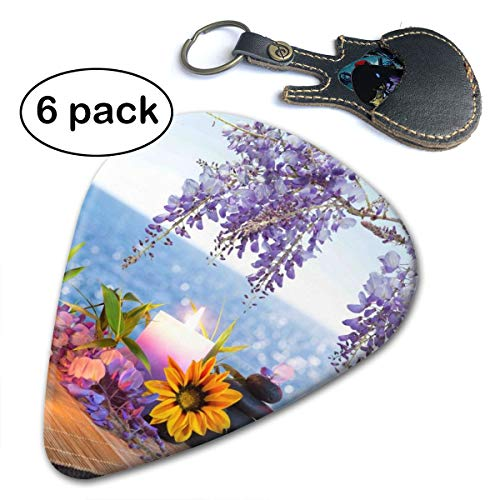 Spa Massage Stones with Daisy and Wisteria Celluloid 6 Pack Guitar Picks for Your Electric Acoustic Bass Guitar and Gifted in A Unique Pick Bag