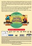 Buy Gori Tere Pyaar Mein! Hindi DVD (Bollywood Film/Cinema/Movie) (2013)