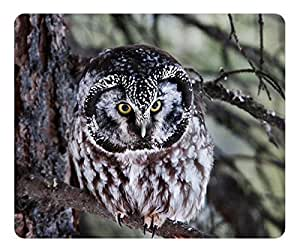 Boreal Owl Mouse Pad Desktop Mousepad Laptop Mousepads Comfortable Computer Mouse Mat Cute Gaming Mouse pad