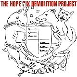 The Hope Six Demolition Project [LP]