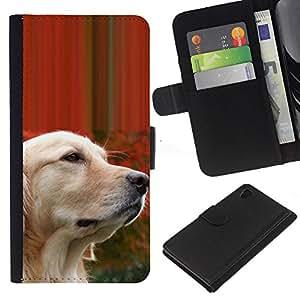 Labrador Golden Retriever Wise Dog - la tarjeta de Crédito Slots PU Funda de cuero Monedero caso cubierta de piel Sony Xperia Z4v / Sony Xperia Z4 / E6508