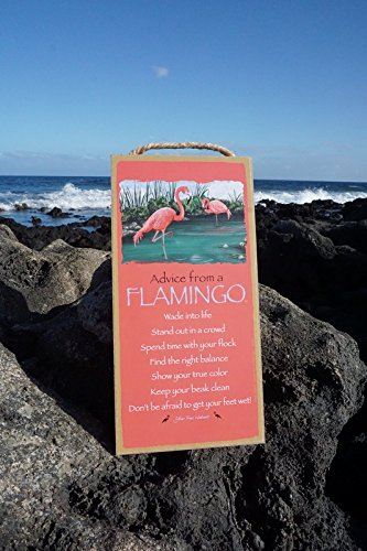 Flamingo Switchplate - Advice From A Flamingo - Get Feet Wet Show True Color Pink Beach Home Decor Sign