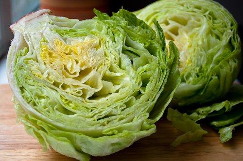 1,000+ Iceberg Lettuce Seeds- Heirloom Variety