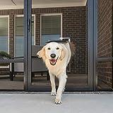 PetSafe Screen Door - Dog & Cat Door For Screen Door, Window & Porch Use, Large - ZPA11-16492