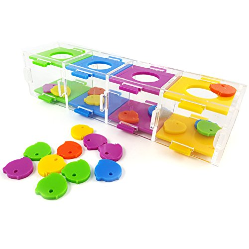 Parrot Intelligence Toy with Color Separation Coin Box for Parrot Macaw African Greys Cockatoo Cockatiel Eclectus Budgie Lovebirds Conures Parakeet Intelligence Training and Interactive Playing