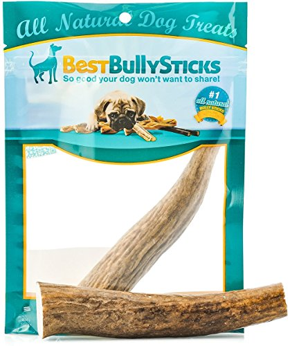 Best Bully Sticks  Best Bully Sticks