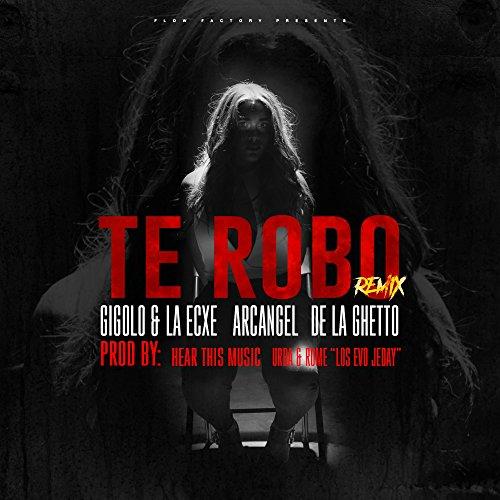 ... Te Robo Remix