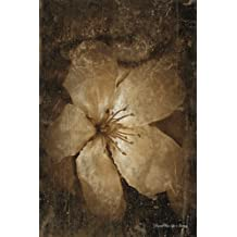 Journal Your Life's Journey: Floral And Grungy, Lined Journal, 6 x 9, 100 Pages
