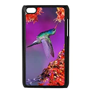 iPod Touch 4 Phone Case Hummingbird FX92245
