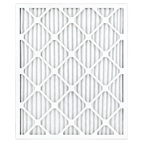 AIRx Filters Allergy 20x24x1 Air Filter MERV 11 AC Furnace Pleated Air Filter Replacement Box of 6, Made in the USA by AIRx Filters