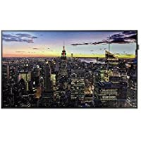 65INCH/LCD/3840X2160/300NIT/8MS/DVI-D, DISPLAY PORT 1.2 (1), HDMI 2.0 (2), HDCP2