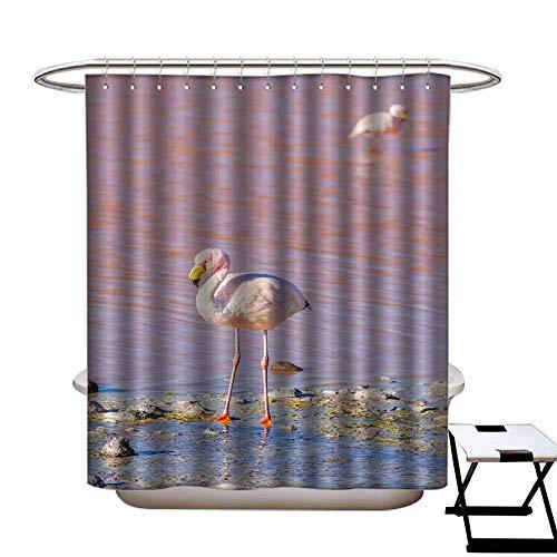 CTdhuejkfro Shower Curtain with Hooks James s Flamingo Salar de Uyuni Bolivia Shower Curtain W72 x ()