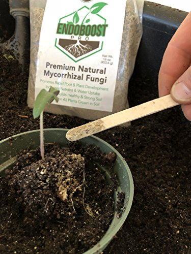 GreenEden EndoBoost Pro Premium Natural Mycorrhizal Fungi