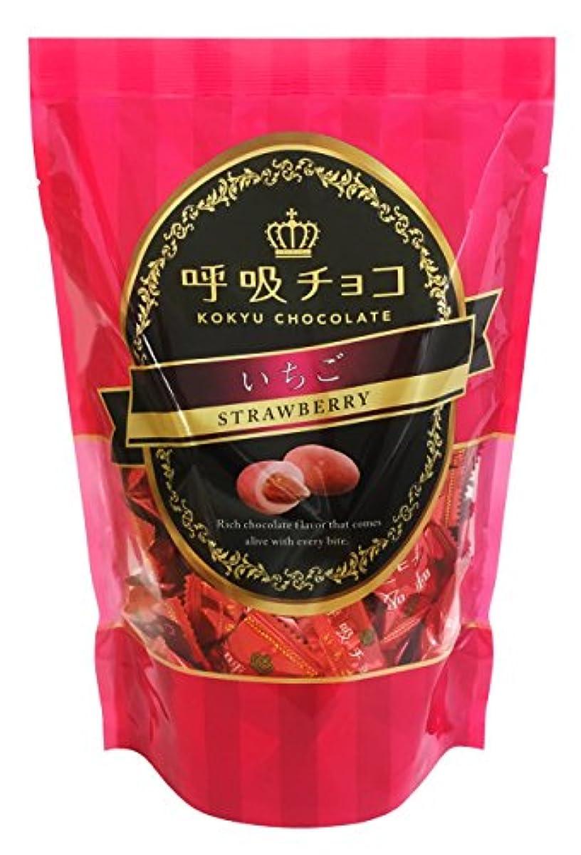[해외] 호흡초코 스탠드팩 딸기 250g