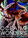 Ocean Wonders: Inside the Monterey Bay Aquarium