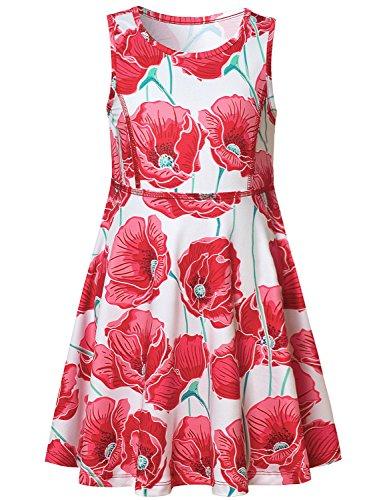 Baby Girl Dress Shirt Summer Floral Sun Red Flower Sleeveless Kid Dress - Dress Blue White Baby Girl And