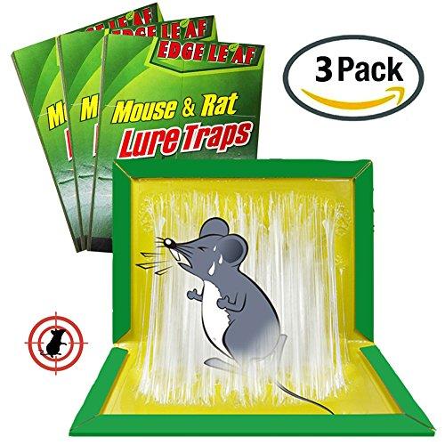 3pk Ant Trap - 8