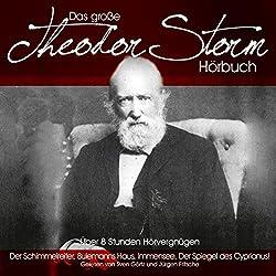 Das große Theodor-Storm-Hörbuch