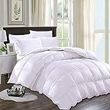 JURLYNE Queen/Full White Comforter Quilted Reversible Duvet Insert, Hypoallergenic Breathable for All Season, Fluffy Light-Weighted Down Alternative Comforter