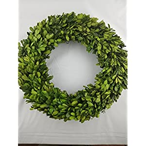 Tradingsmith Preserved Boxwood Wreath 14 in 81