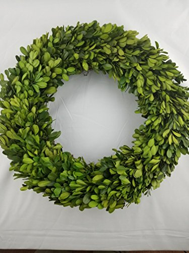 Preserved Boxwood Wreath 14 in by Tradingsmith (Greens Preserved)