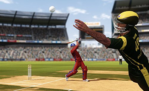 DON BRADMAN CRICKET 14 (PS4) by Tru Blu Entertainment (Image #5)