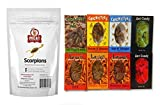 Ultimate Insect and Bug Candy Sampler Pack: 3- Crick-ettes, 3- Larvets, 2- Ant Candy, 1 Meat Maniac Scorpions
