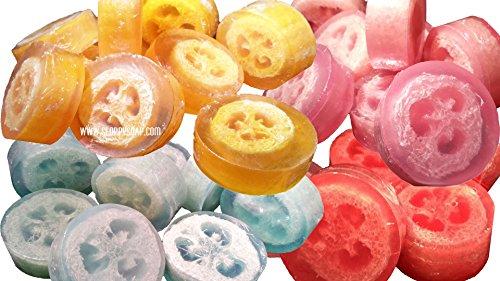SloppySoap Loofah Soap (4-Pack)