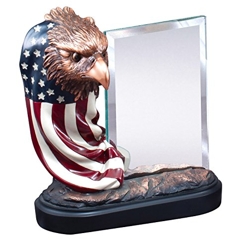 Etch Workz Customize Resin Casting Award - RFB164 Series Patriotic Eagle Sculpture & Flag With Glass Trophy - Gold Plated - Engraved & Personalized Free ()