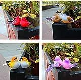 URToys 10Pcs 6-10CM Multi Colors Decorative