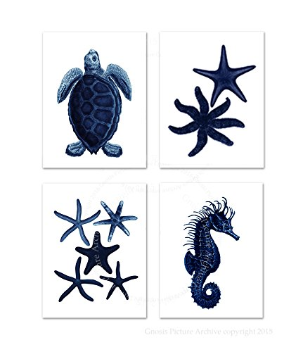 Dark Navy Blue Beach Wall Decor Set of 4 Unframed Sea Corals Seahorse Starfish Beach Bathroom Art Prints (Navy Coral Picture)