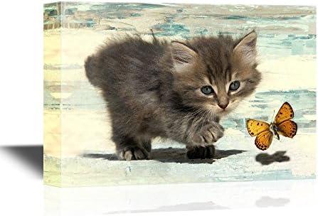 Cats Little Kitten Chasing a Butterfly