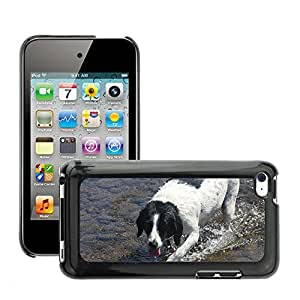 Hot Style Cell Phone PC Hard Case Cover // M00116367 Dog Water Summer Hot Wading Animal // Apple ipod Touch 4 4G 4th