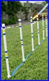 Dog Agility Stick in the Ground Outdoor Weave Poles - Set of 6