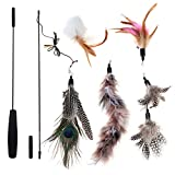 Chiwava Cat Toys Interactive Feather Wand with 5 Piece Furry Feather and Bell Exercising for cat and Kitten