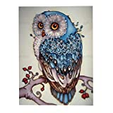 C-Pioneer DIY 5D Diamond Embroidery Painting Rhinestone Cross Stitch Craft Home Decor (Owl B)