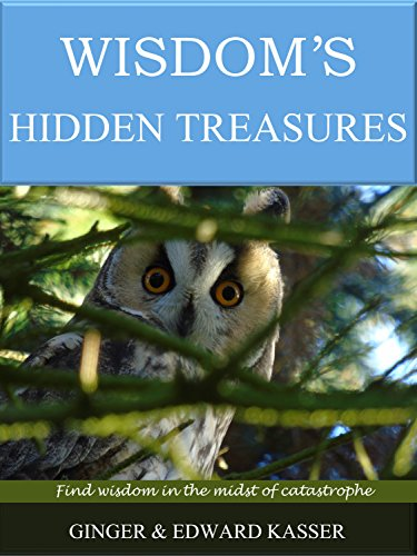Wisdom's Hidden Treasures: Find wisdom in the midst of catastrophe by [Kasser, Ginger, Kasser, Edward, wisdom, King Solomon, book of wisdom, prayer for wisdom, Bible precepts, prudence]