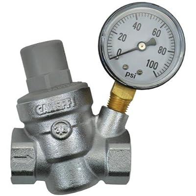 Dosatron Pressure Regulator w/Gauge - 3/4 in (FPT x FPT) by Dosatron