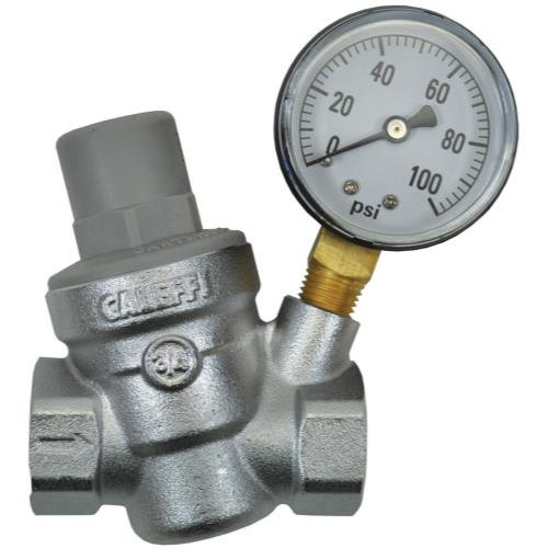 Dosatron Pressure Regulator w/ Gauge - 3/4 in (FPT x (Fpt Gauge)